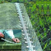 Țepi din oțel împotriva păsărilor (l. - 34 cm.) - 25 metri