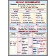 Present du sobjonctif. L'emploi du subjonctif/Formes du conditionnel present