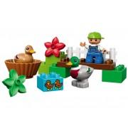 Ratele din padure LEGO DUPLO - 10581