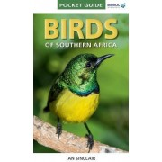 Pocket Guide Birds of Southern Africa by Ian Sinclair