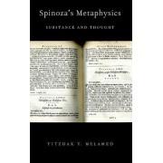 Spinoza's Metaphysics by Yitzhak Y. Melamed