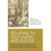 Relating to Self-harm and Suicide by Stephen Briggs
