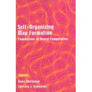 Self-organizing Map Formation by Klaus Obermayer