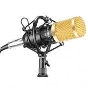 Neewer NW-800 Professional Studio Broadcasting & Recording Microphone Set Including (1)NW-800 Professional Condenser Microphone + (1)Microphone Shock Mount + (1)Ball-type Anti-wind Foam Cap + (1)Microphone Power Cable (Black)