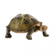 Safari Ltd Wild Safari North American Wildlife - Desert Tortoise - Realistic Hand Painted Toy Figurine Model - Quality Construction From Safe and BPA Free Materials - For Ages 3 and Up by Safari Ltd.