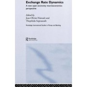 Exchange Rate Dynamics by Jean-Olivier Hairault