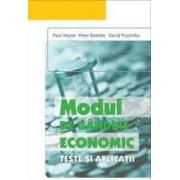 Modul de gandire economic. Teste si aplicatii - Paul Heyne Peter Boettke