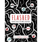 Flashed: Sudden Stories in Comics and Prose
