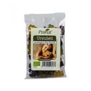 Ursuleti din Fructe Bio Pronat 100gr