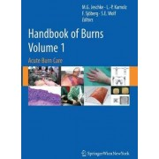 Handbook of Burns: Acute Burn Care v. 1 by Marc G. Jeschke