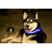 Collare per Cane Luminoso con luce a LED