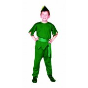 Rg Costumes Elf Costume, Green, Large