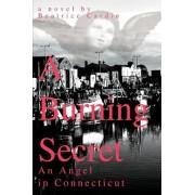 A Burning Secret by Beatrice Cardin