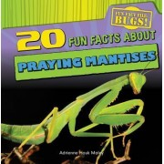 20 Fun Facts about Praying Mantises by Adrienne Houk Maley