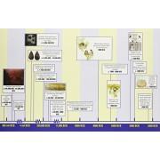 Lorenz Corporaci-n MP5121 Historia de la World Timeline-Grade 7-12