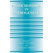 Mitochondria in Pathogenesis by John J. Lemasters