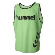 hummel Leibchen CLASSIC - shiny green   Senior