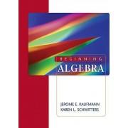 Beginning Algebra by Karen Schwitters