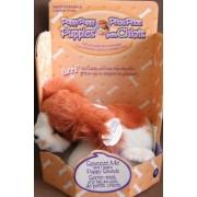 Puppy Puppy Puppies - Springer Spaniel