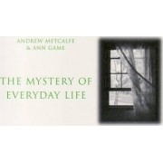 The Mystery of Everyday Life by Andrew Metcalfe