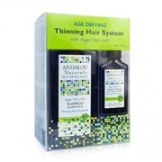AGE DEFYING THINNING HAIR TREATMENT SYSTEM
