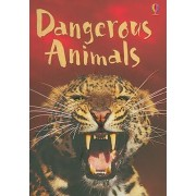 Dangerous Animals by Rebecca Gilpin