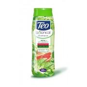 Sampon Teo Botanical Nettle Grapefruit 400ml