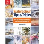 Watercolour Tips & Tricks by Zoltan Szabo