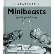 Read Write Inc. Comprehension: Module 24: Children's Books: Mini Beasts Pack of 5 Books by Lynn Huggins-Cooper