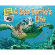 A Sea Turtle's Life by Ellen Lawrence