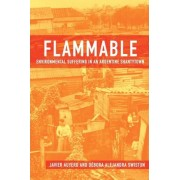 Flammable by Javier Auyero