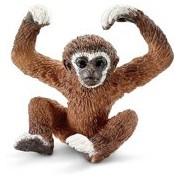Jonge Gibbon