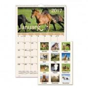 Horses Monthly Wall Calendar, 12 X 17, 2017