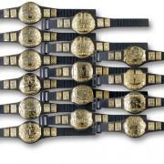 15 Belt Mega Deal (Series 1) Championship Belts For Wrestling Action Figures