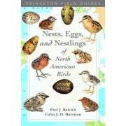 Nests, Eggs, and Nestlings of North American Birds by Paul J. Baicich