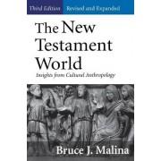 The New Testament World by STD Bruce J. Malina