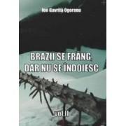 Brazii se frang dar nu se indoiesc. Vol. II - Ion Gavrila Ogoranu