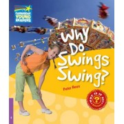 Why Do Swings Swing? Level 4 Factbook: Level 4 by Peter Rees