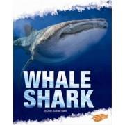 Whale Shark by Deborah Nuzzolo