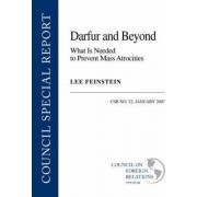 Darfur and Beyond by Lee Feinstein