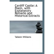 Cardiff Castle by Taliesin Williams