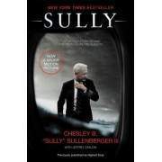 Sully: My Search for What Really Matters