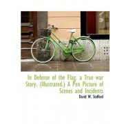 In Defense of the Flag. a True War Story. (Illustrated.) a Pen Picture of Scenes and Incidents by David W Stafford