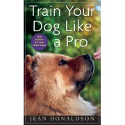 Train Your Dog Like a Pro [With DVD]