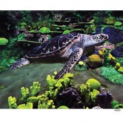 Andrews + Blaine Sea Turtle Puzzle (500-Piece)