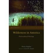 Wilderness in America: Philosophical Writings