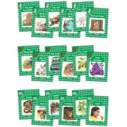 Jolly Phonics Readers, Complete Set Level 3 by Sara Wernham