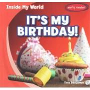 It's My Birthday! by Tina Benjamin