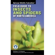 National Wildlife Federation Field Guide to Insects and Spiders & Related Species of North America by Arthur V. Evans