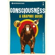 Introducing Consciousness by Professor of Philosophy David Papineau